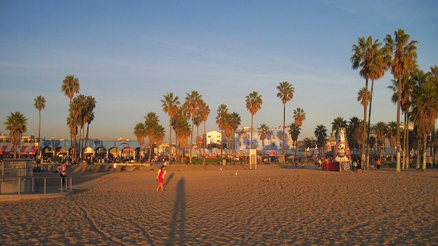 5 cool things to do in venice beach los angeles bachelorette rh pinterest com