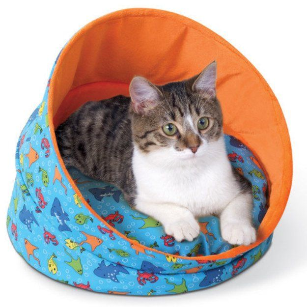 I M Learning All About K With Images Cat Bed Cat Pet Supplies Cat Bed Furniture