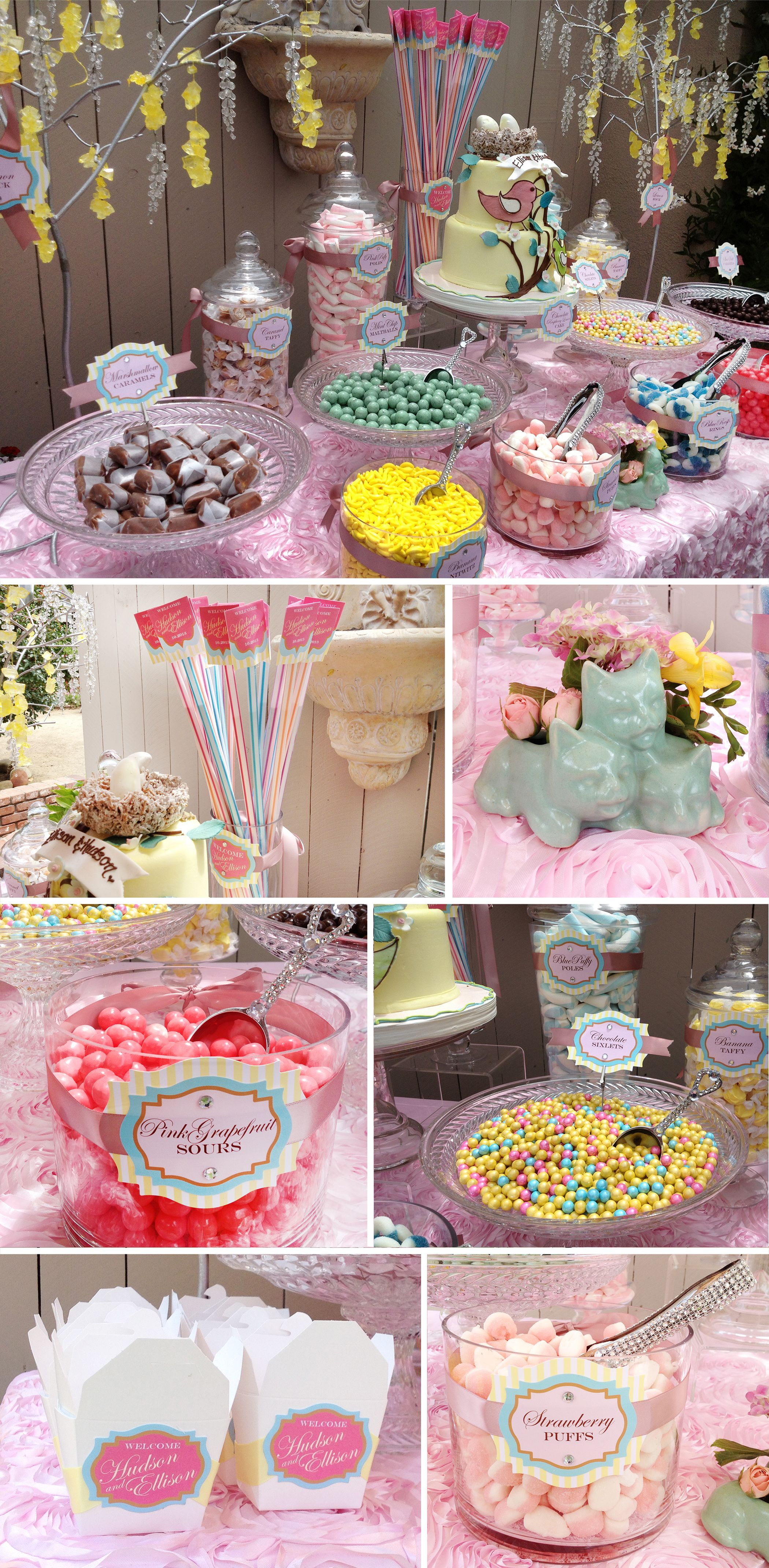 backyard baby shower for twins a boy and a girl labels boxes rh pinterest com