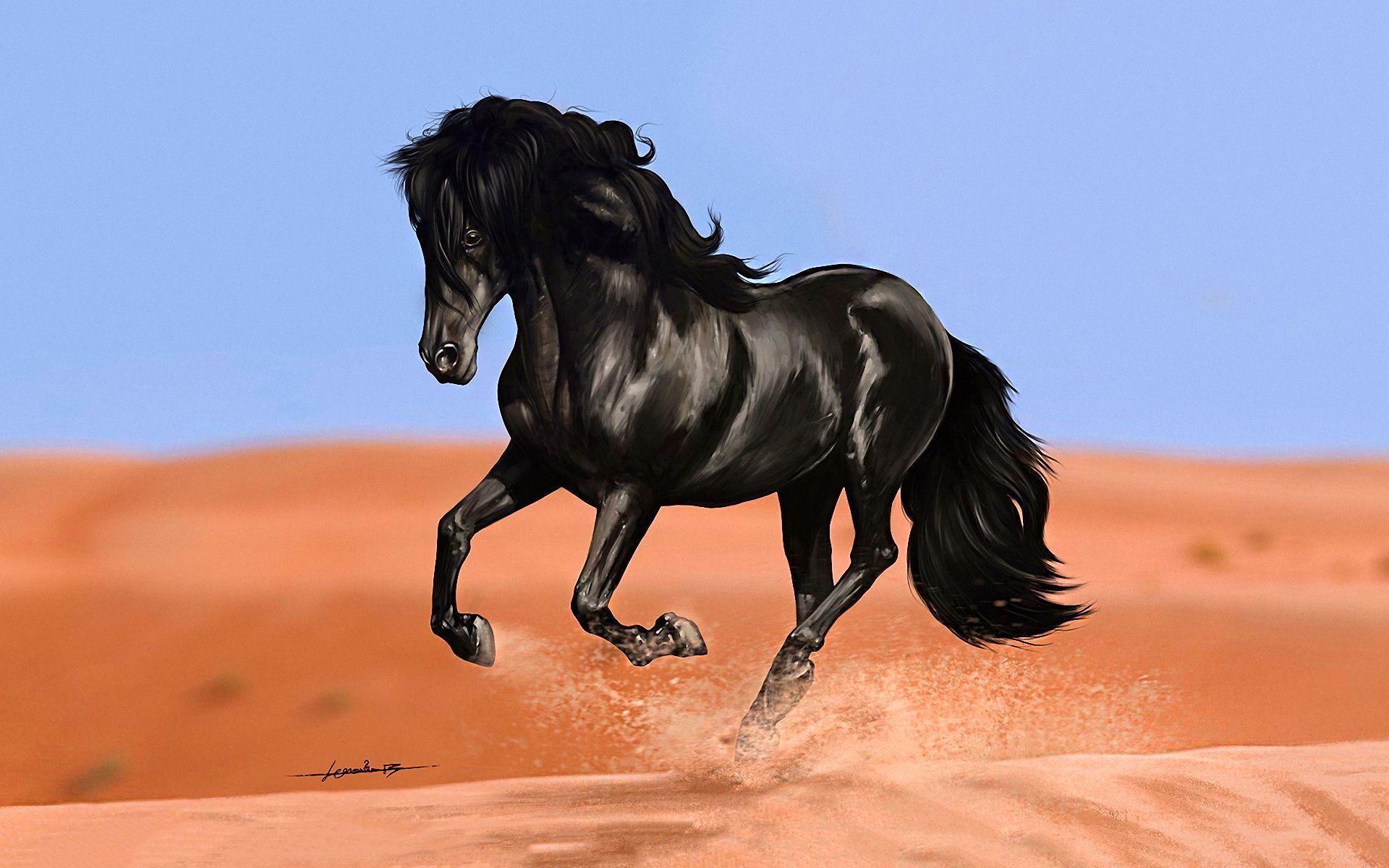 Popular Wallpaper Horse Art - 0a907f3e43e94029eb030385c4422f5a  Image_8310098.jpg