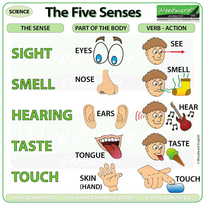 The Five Senses #sensorythings
