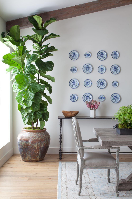 Dining Room Design With Plants Providing Organic Feel