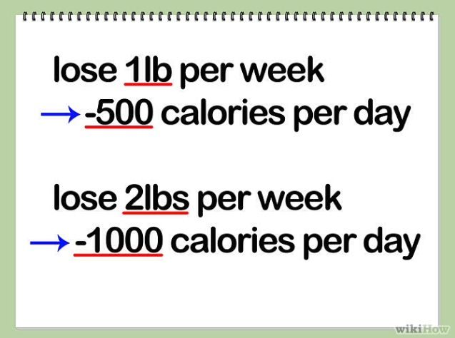 1 lb weight loss per day