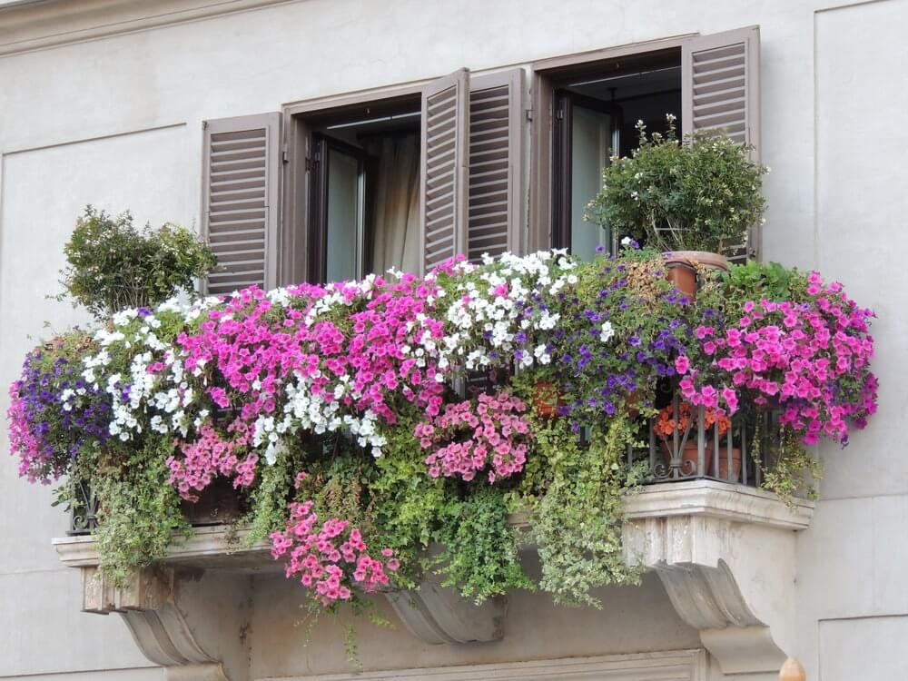 40 Window and Balcony Flower Box Ideas (PHOTOS) Balcony