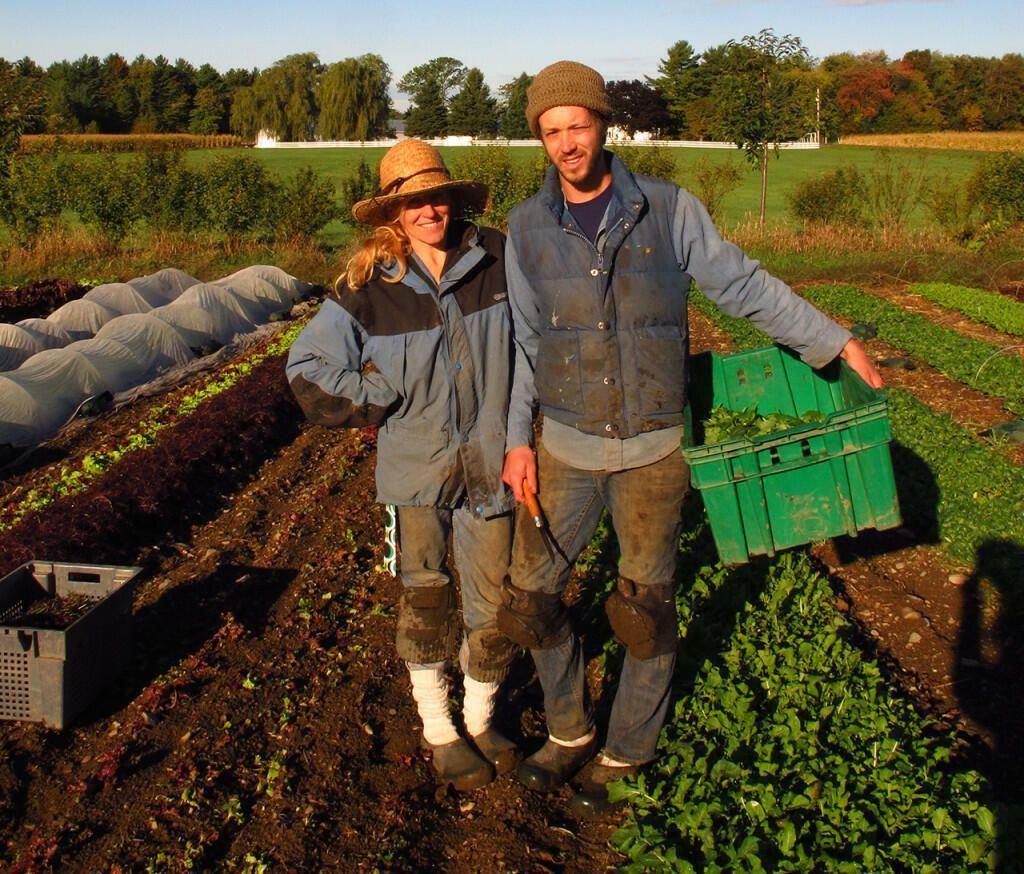 How to Make a Living From a 1.5 Acre Market Garden #MarketGarden ...