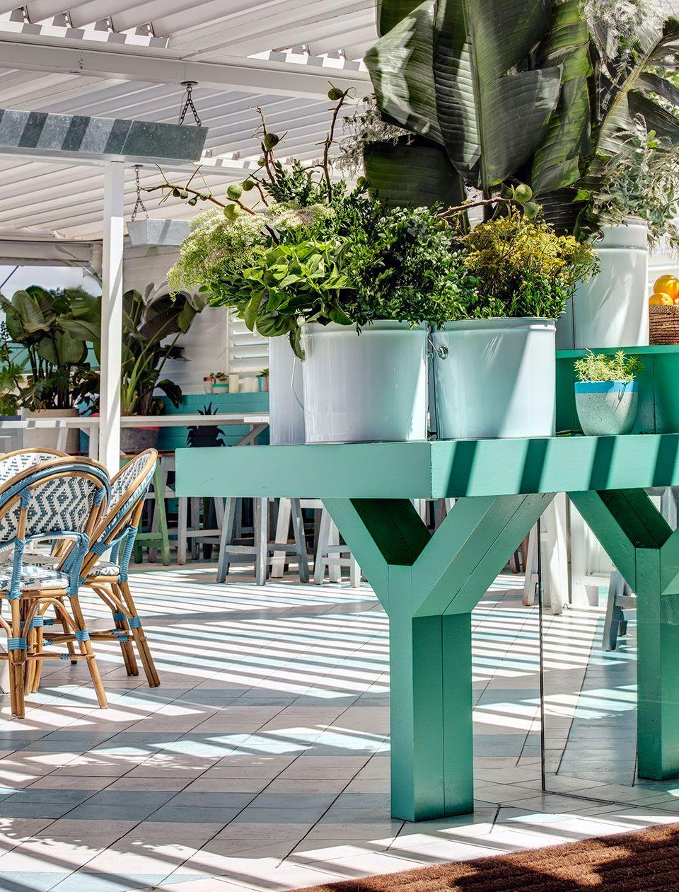 watsons bay hotel beach club interior design by alexander and co rh pinterest com