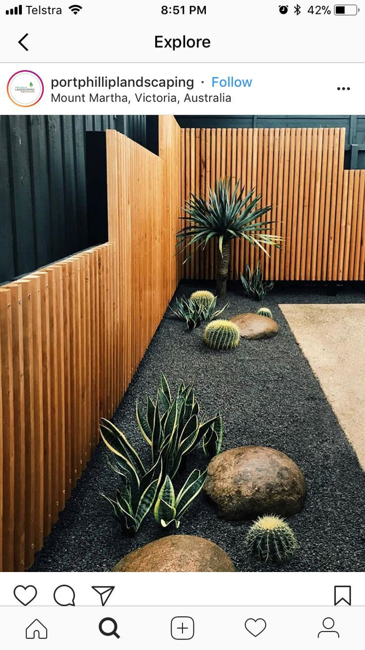 Cacti in gray gravel with smooth boulders at edge of ...