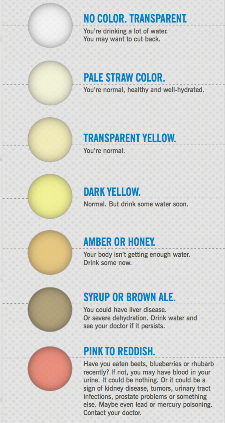 Health Check What Your Pee And Poo Colour Says About Your Health
