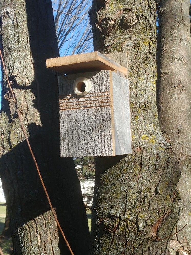 Chickadee birdhouse bird houses bird house barn wood