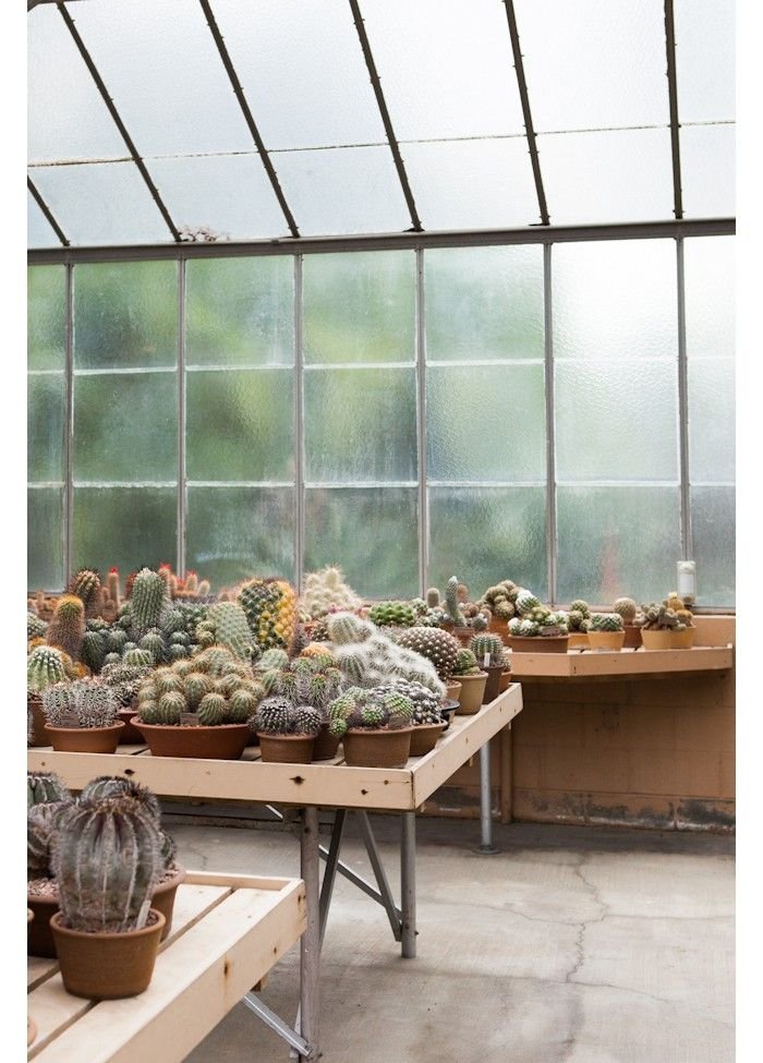 a magical glasshouse garden in pasadena green things succulents rh pinterest com