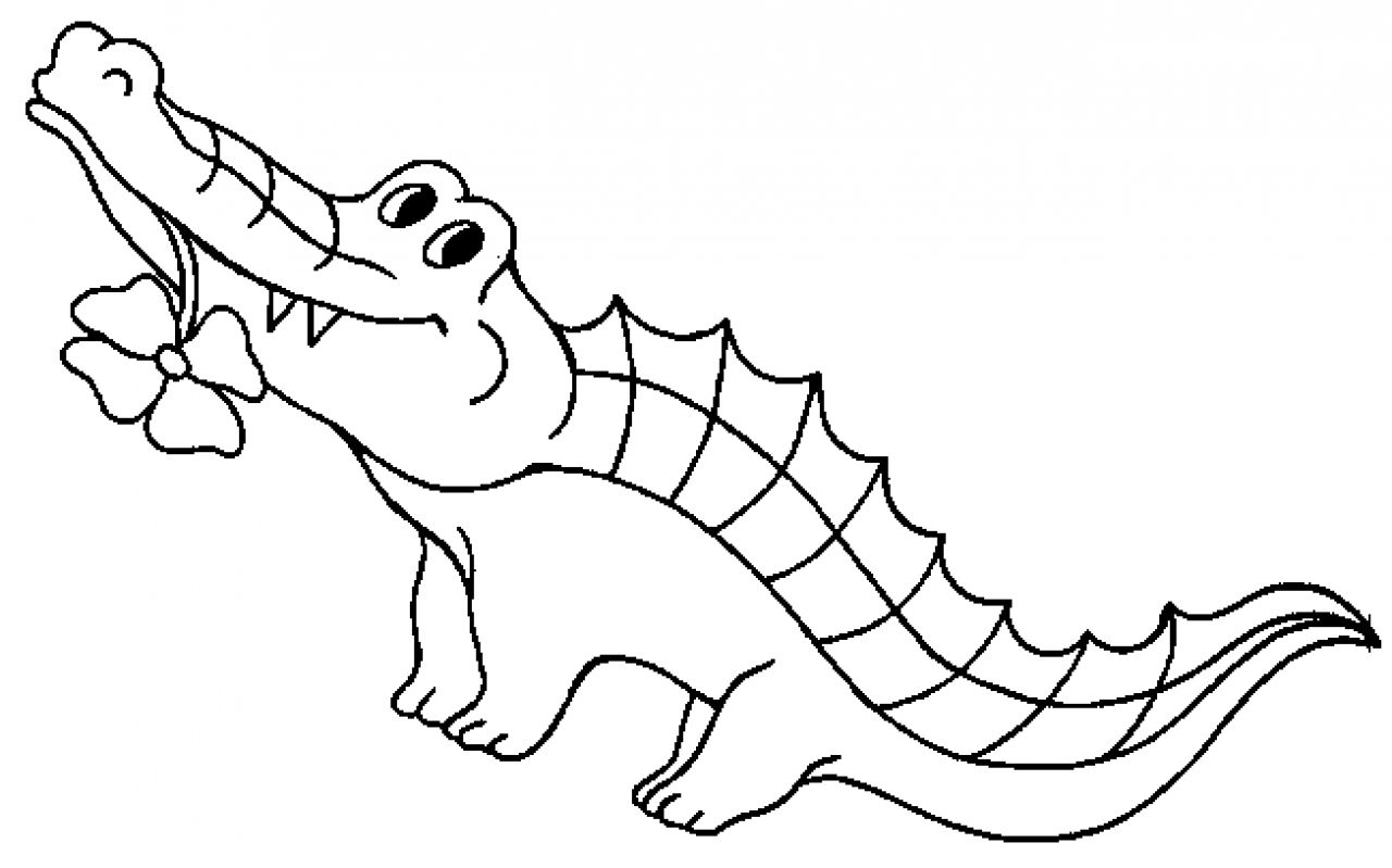 Image Result For Crocodile Coloring Page