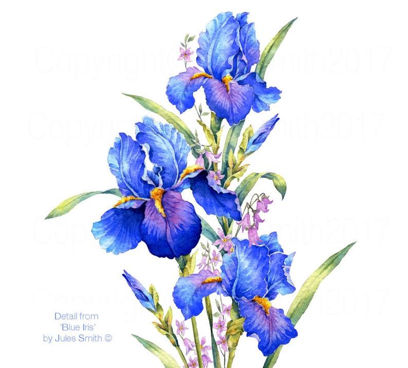 Blue Iris Watercolor Flower Painting Handmade Original Art Etsy In 2020 Watercolor Flowers Paintings Iris Drawing Iris Painting