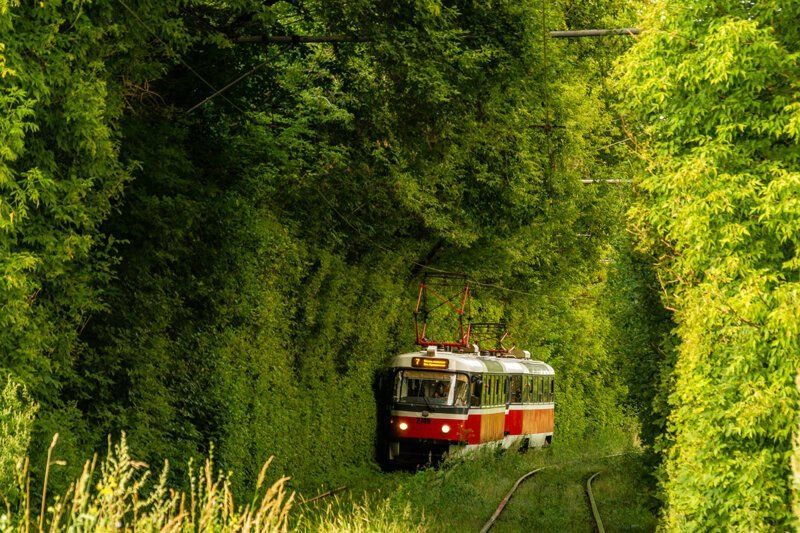 Nice Tram Photos from the Russia Photo, Cool photos