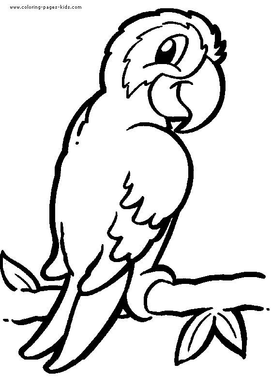 Detailed Animal Coloring Pages | Parrot coloring pages, color plate ...