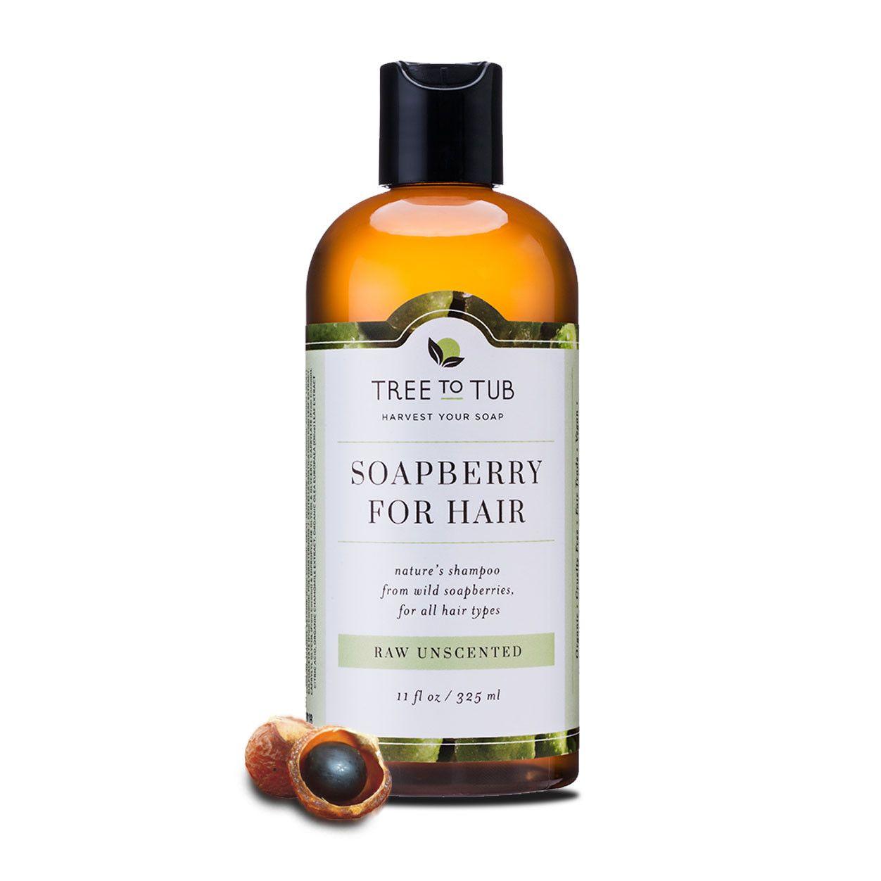 Soapberry Shampoo