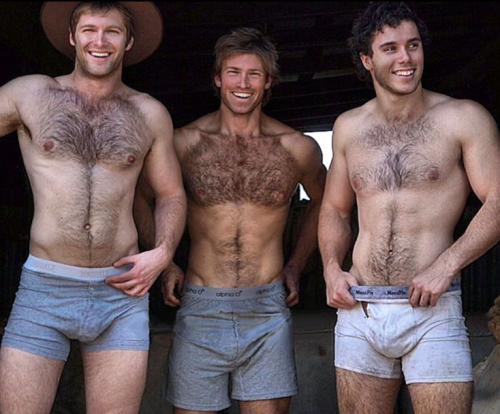 Hairy muscle gays