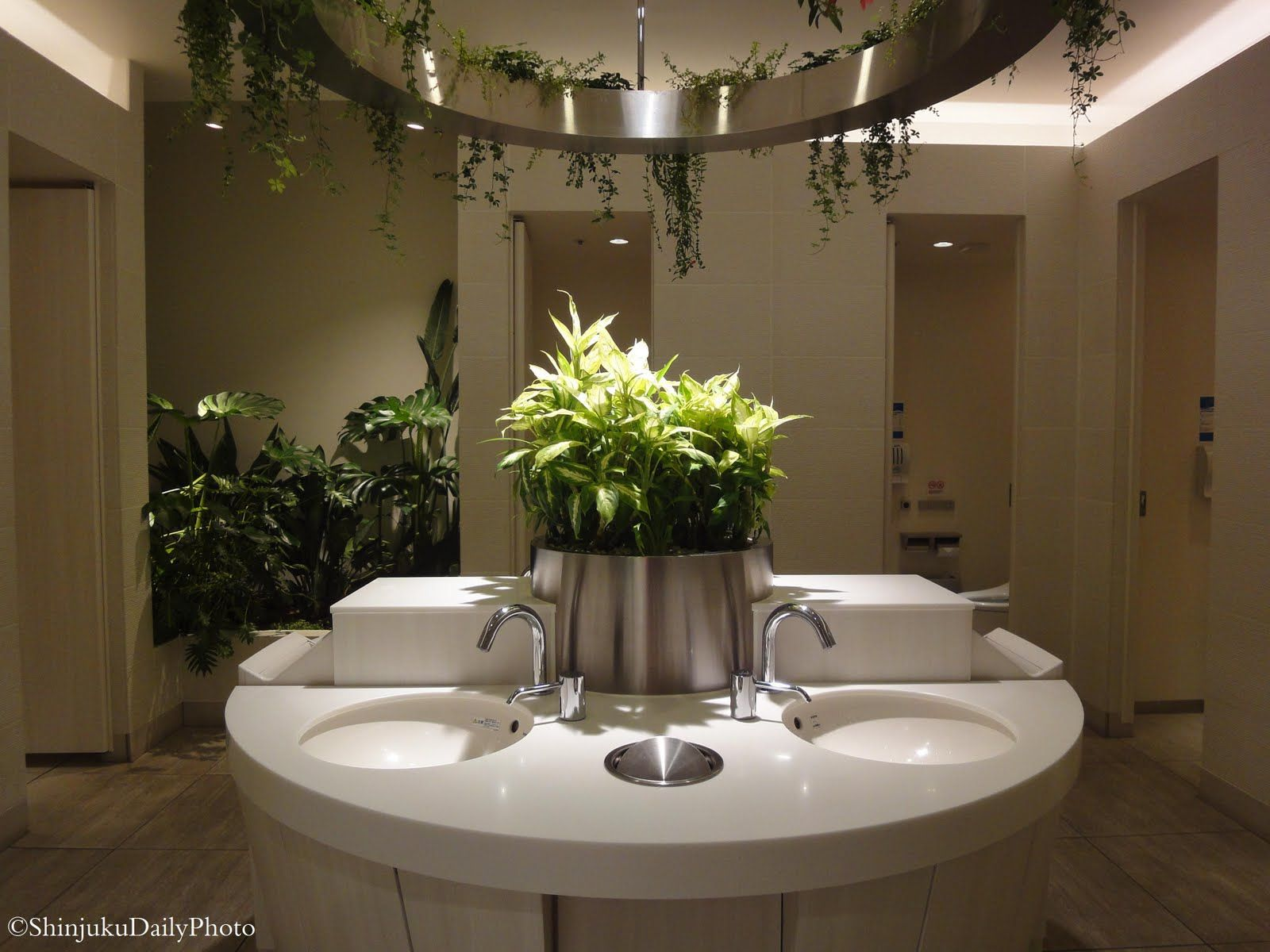Public Restroom With Plants