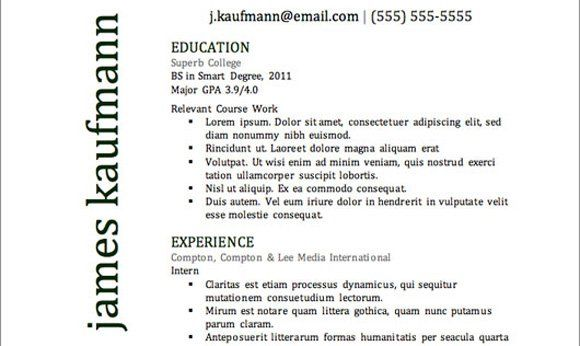 The 41 Best Resume Templates Ever Things ill own when im a - the best resume ever