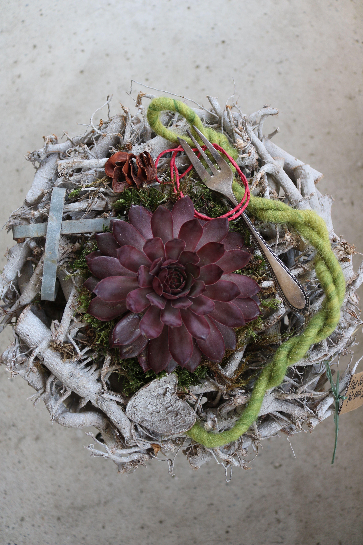 Bepflanzung mit Hauswurzen im Kranz