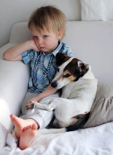 Un Petit Garçon triste et Boudeur que son Chien Réconforte en se Blotissant contre lui