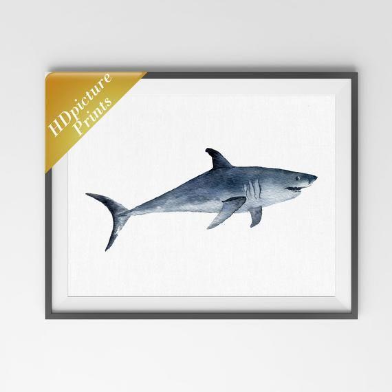 Deep Sea Fish Shark Gift Shark Print Shark Art Bedroom Decoration