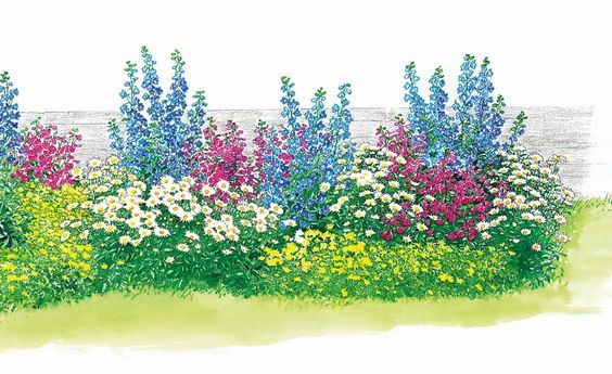 Das lang gestreckte Beet (4 x 1 Meter) eignet sich gut für einen schmalen sonnigen Streifen entlang der Gartengrenze oder des Hauses. Blütenhöhepunte sind im Frühsommer und im September/Oktober, wenn der Rittersporn nach dem Rückschnitt erneut aufblüht.