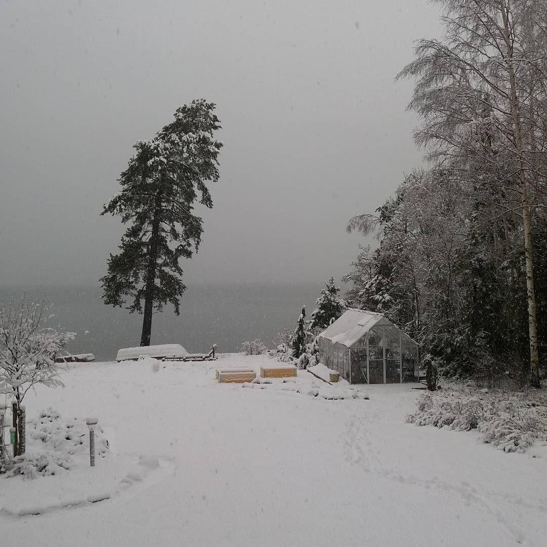 """42 Likes, 4 Comments - Kristiina Kortelahti (@meidan_mokki_ja_kaupunkikoti) on Instagram: """"Voi kevät minkä teit! #kevät #lumi#snö#snow#kasvihuone #palram #mökillä #huhtikuu#april"""""""
