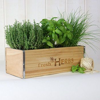 Fresh Herbs Window Box In Natural Wood Herb Garden Kit