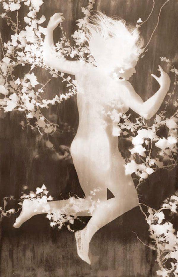 Photograms – Harlow Tighe