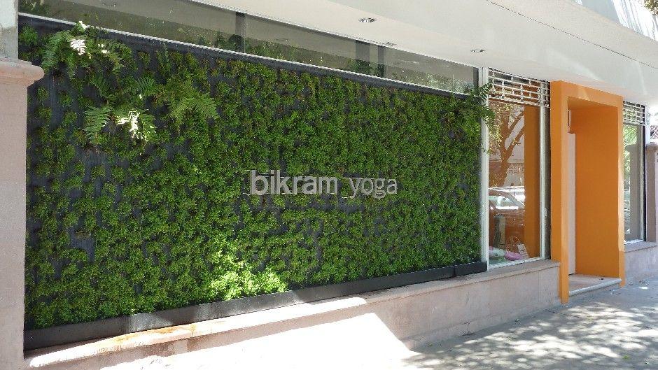 Muro verde en la fachada de bikram yoga muro verde en for Muros verdes verticales