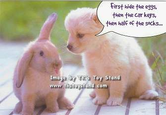 Easter Holiday Quotes Funny