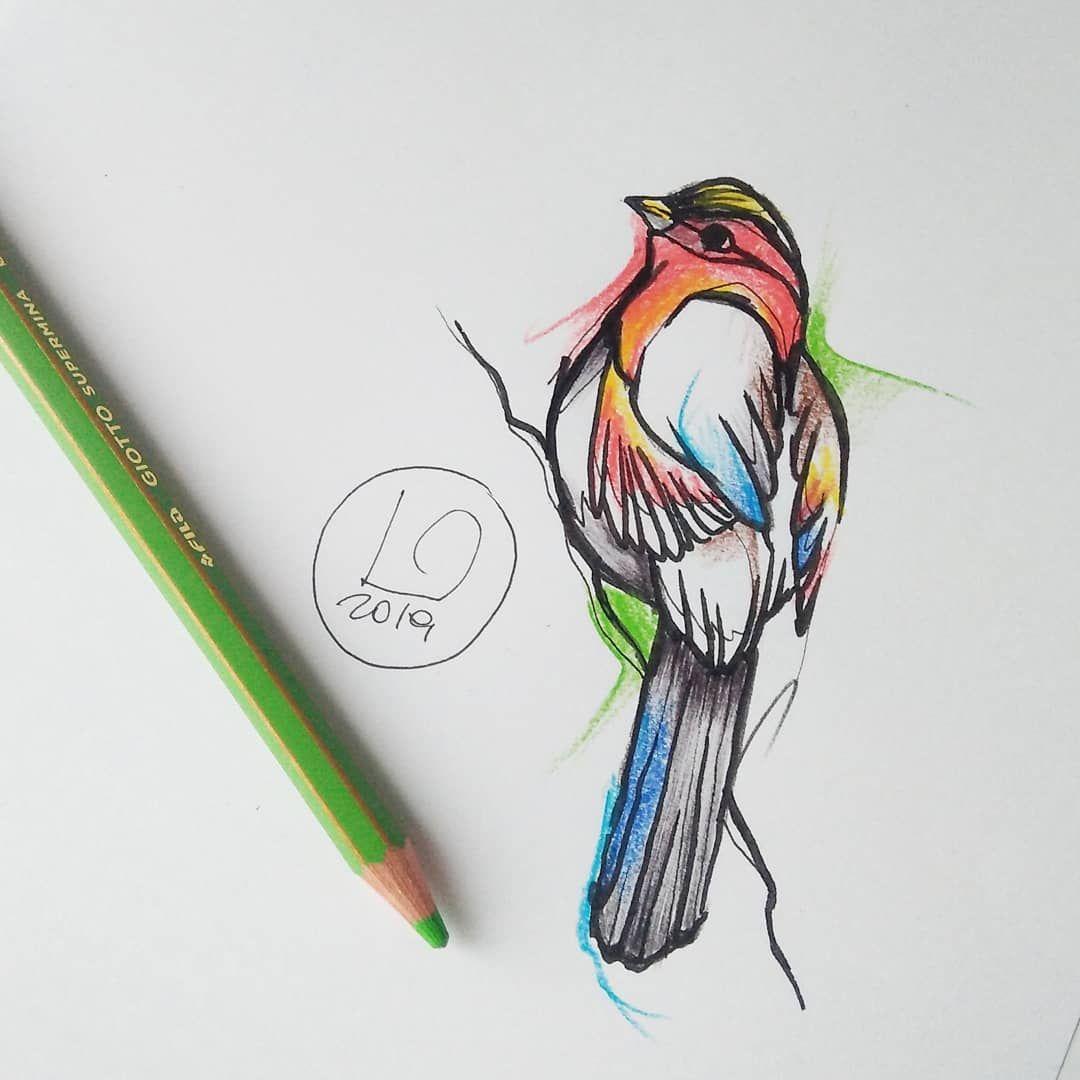 #bird#sparrow#sparrowtattoo#amore#colours#tattoo#watercolour#stabilo#watercolortattoo#tattoo#tatuaje#picoftheday#original#girltattoo#tattoer#ink#inkedgirl#inkedman#istatattoo#babygrace#verona#veronatattoo#sommacampagna#tatuatoriitaliani