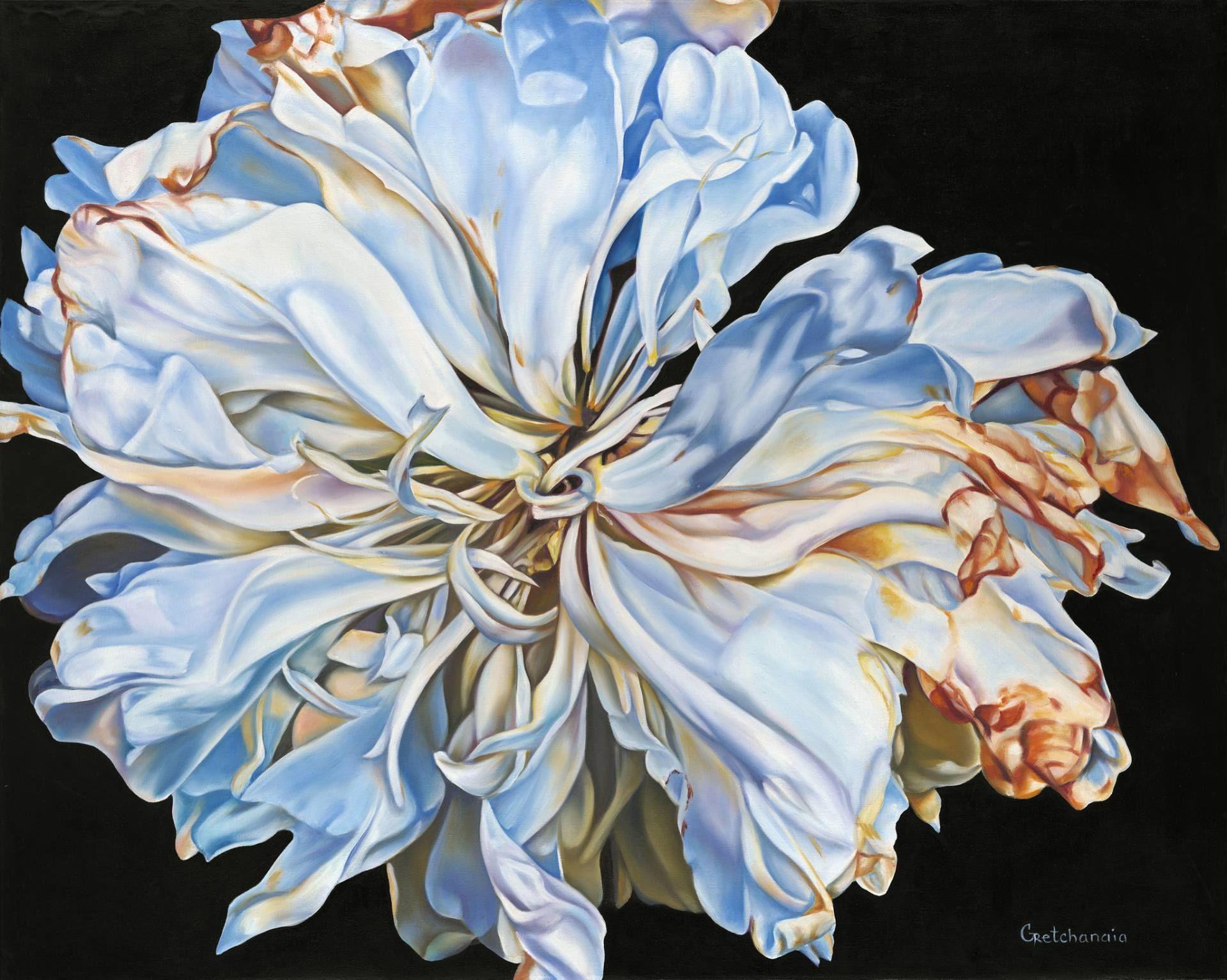 Exhilaration Limited Edition Art Print By Irina Gretchanaia With