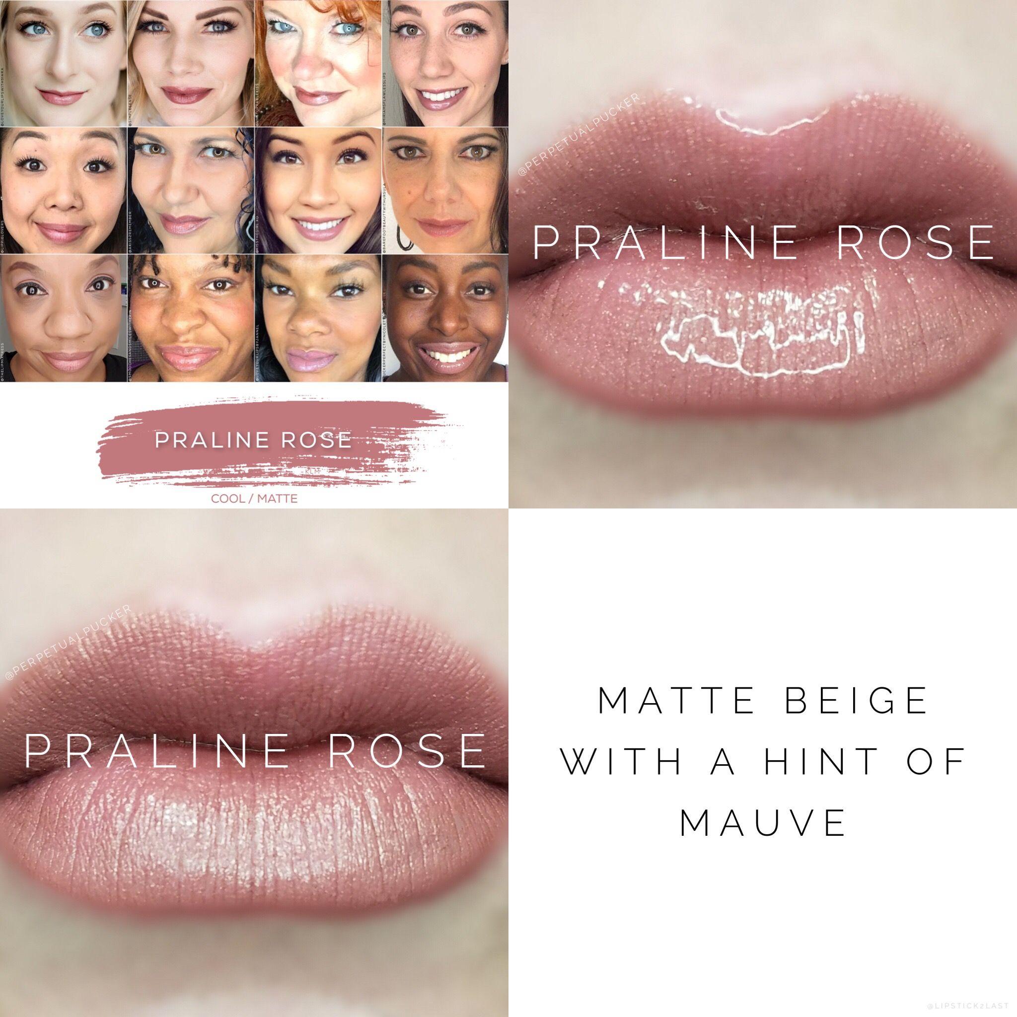Praline Rose Lipsense Updated Face Collage Soft Brown Lipstick