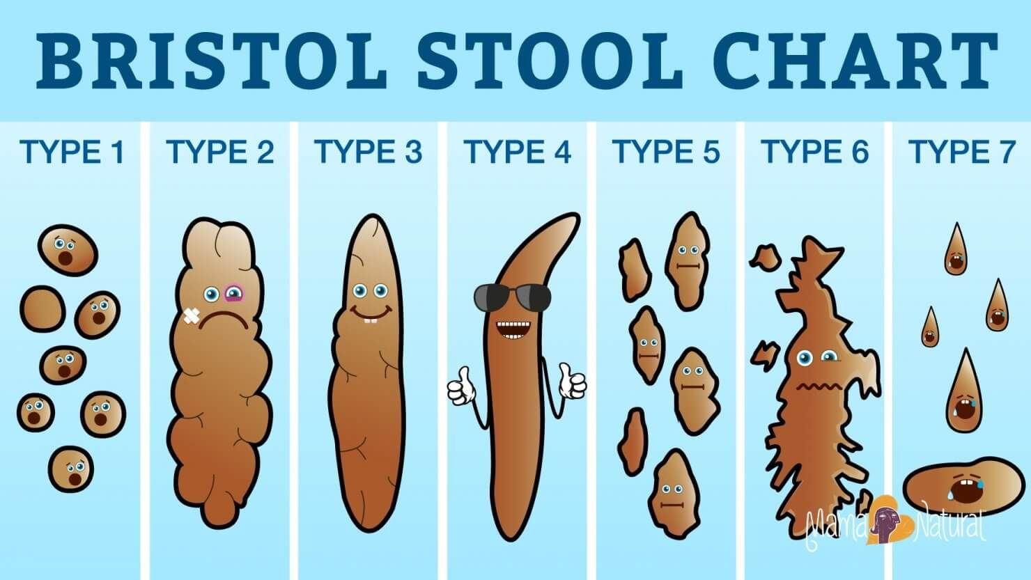 What Your Poop Says About Your Health For Serious  Bristol