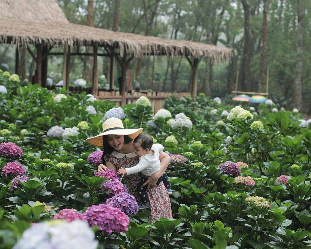 Taman Bunga Di Kota Batu Malang
