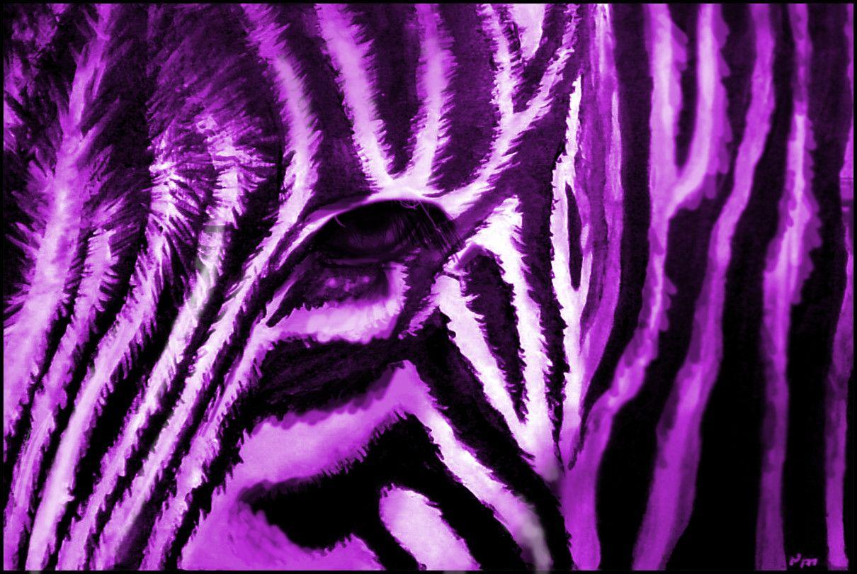 Purple zebra print background best animal wallpapers i - Purple cheetah print background ...