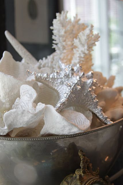 shells in vintage silver beach house inspiration brocante home rh pinterest com