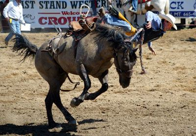 rodeos never just for cowboys july 12 2007
