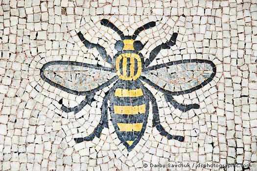 Image result for bees manchester town hall
