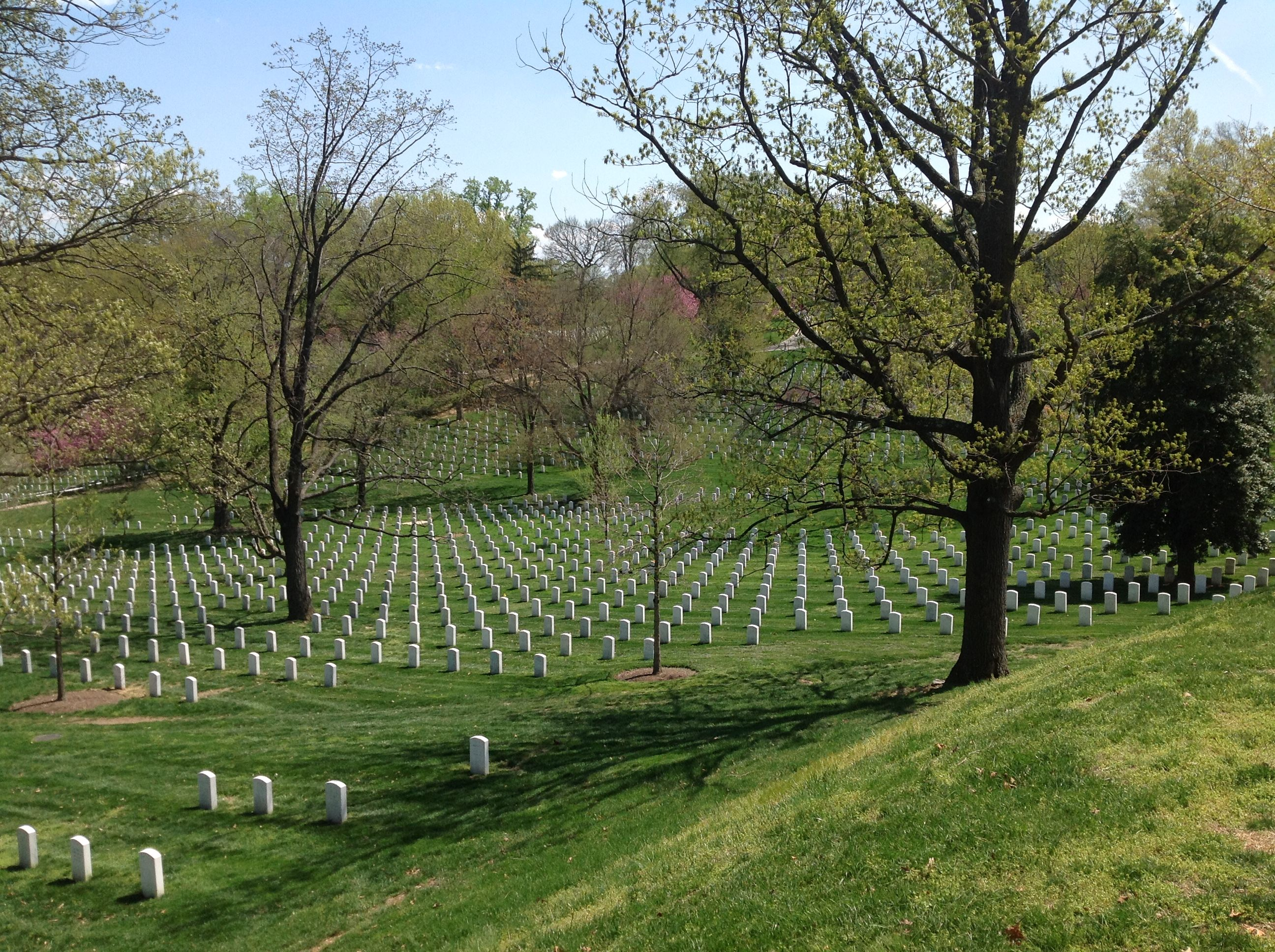 Arlington National Cemetery (a Joe Cruz photo)