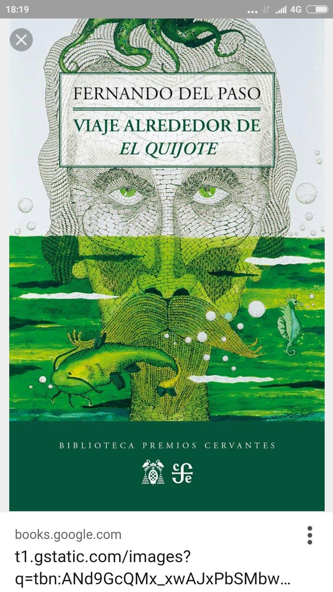 Viaje alrededor de El Quijote #books #libros #historica