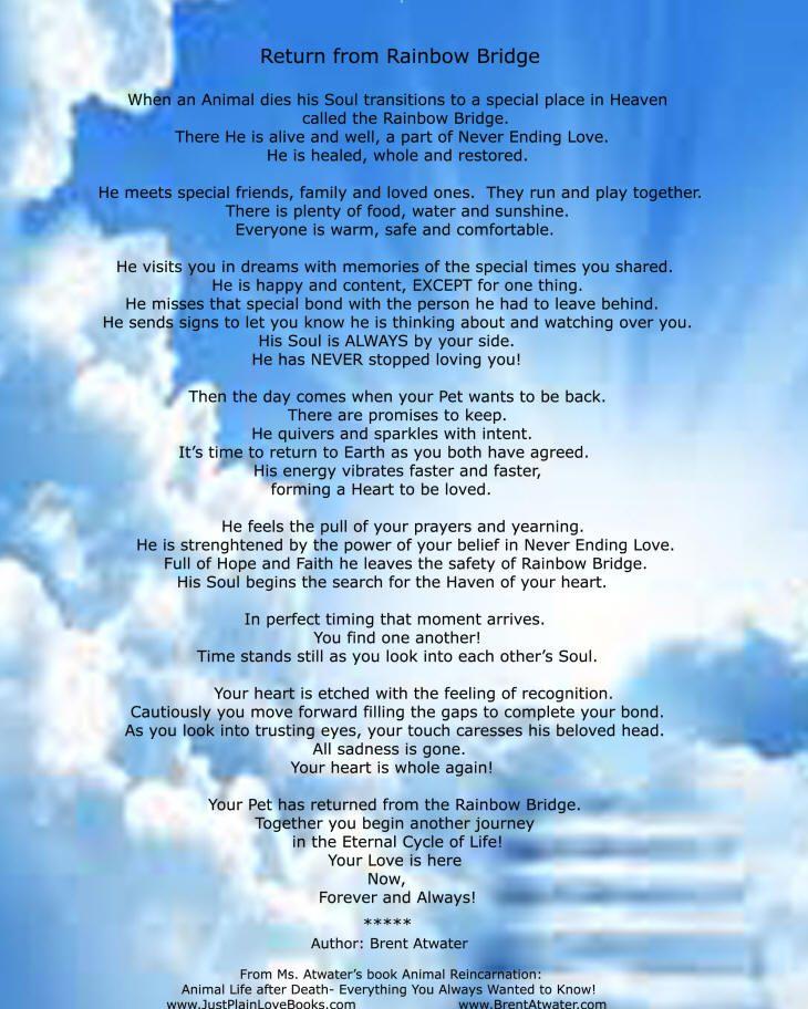 Original Rainbow Bridge Poem The Official Original Return From