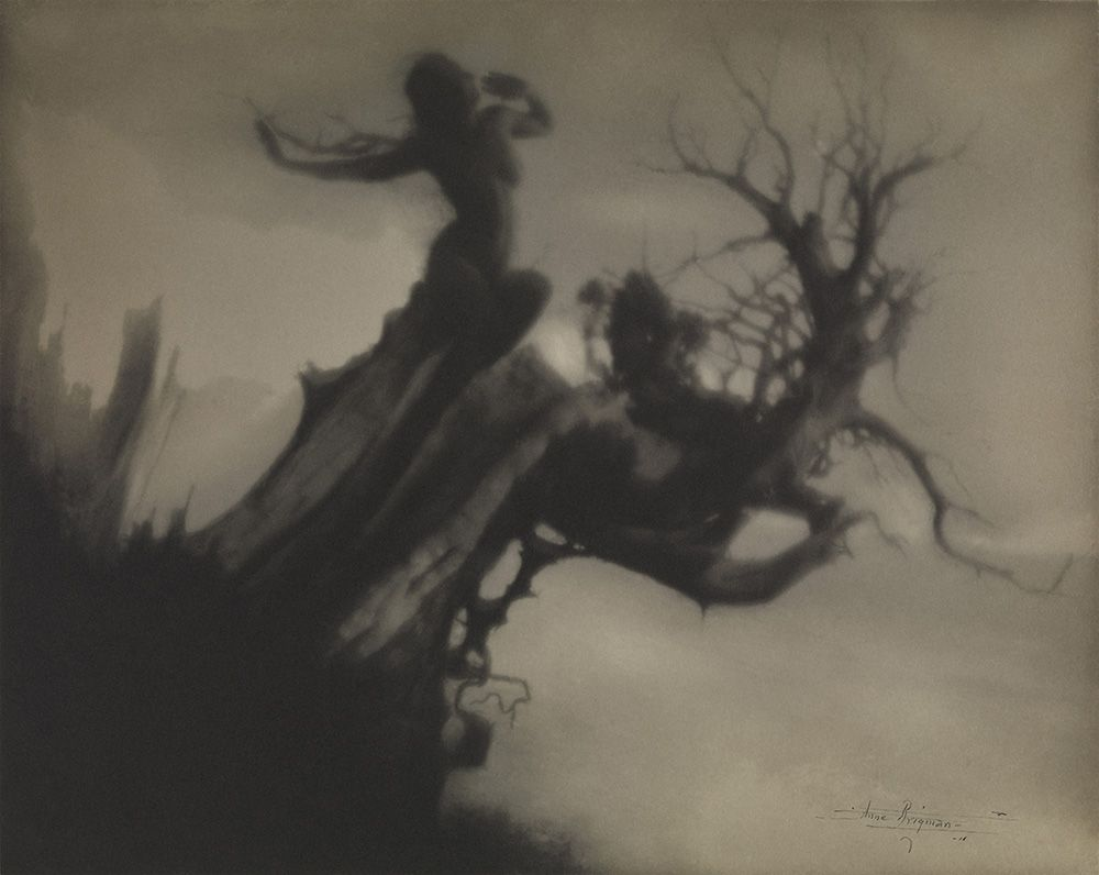 anne brigman a visionary in modern photography at the nevada rh pinterest com