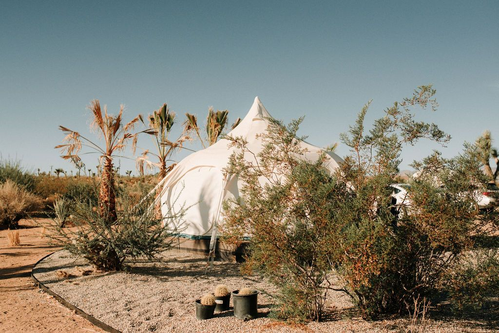 How to elope in joshua tree edgy california bridals