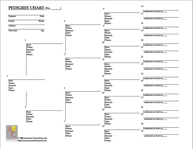 8 generation ancestor chart form free genealogy for Templates for family tree charts