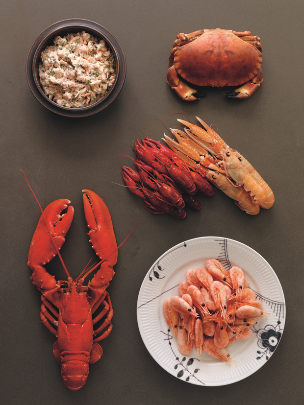 the nordic cookbook by magnus nilsson take a sneak peak now rh pinterest com