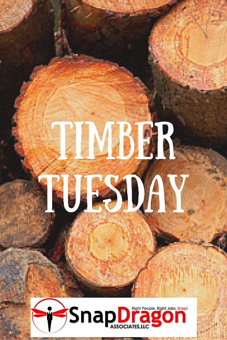 http://www.pmmer.com/industry-news/timber-business-booming-as-demand-surges-worldwide.html #TimberTuesday!