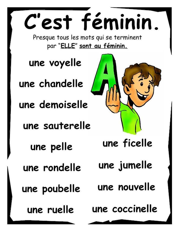 masculin ou f 233 minin grammaire learning and language