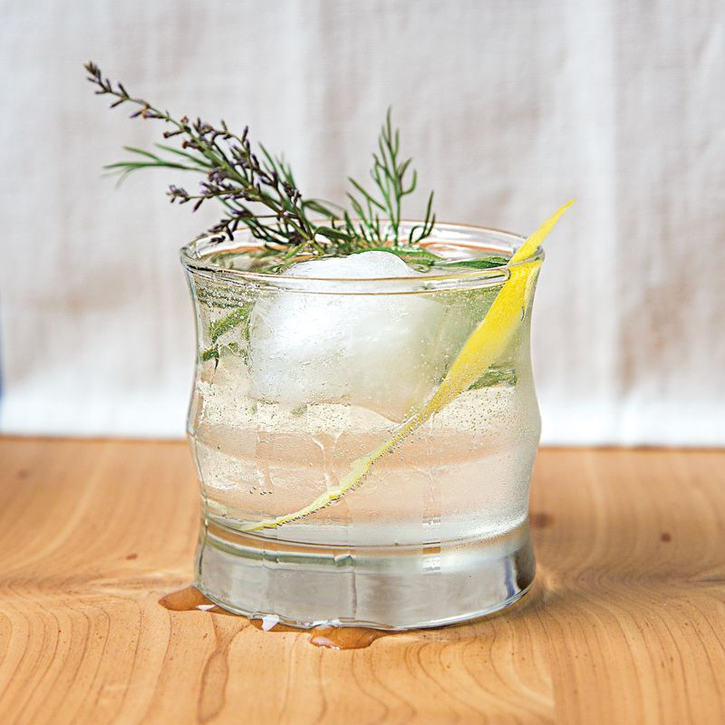 Dill Gin & Tonic Recipe #bestgincocktails